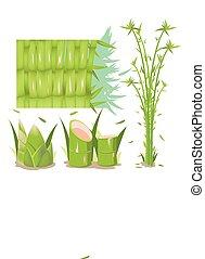 sätta, träd, isolera, kollektion, vektor, bambu