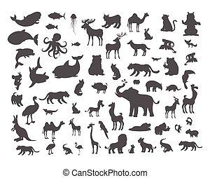 säugetiere, fische, reptilien, amphibias, fledermäuse, vögel, set.