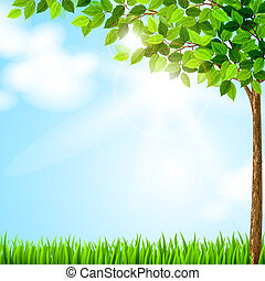 sæson, træ