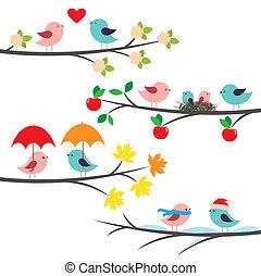 sæsonprægede, branches, og, fugle