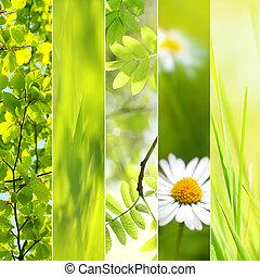 sæsonprægede, forår, collage