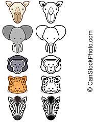 sæt, animals., vektor, vild, zoo, eller