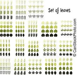 sæt, blad, illustration., leaves., vektor, cartoon