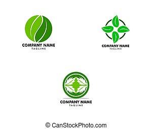 sæt, blad, natur, vektor, konstruktion, skabelon, logo, grønne, cirkel