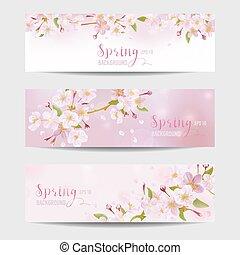 sæt, blomstre, forår, -, træ, vektor, blomst, kirsebær, banner
