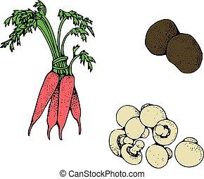 sæt, i, friske grønsager, by, din, konstruktion
