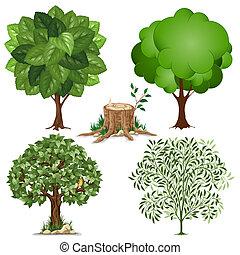 sæt, i, træer