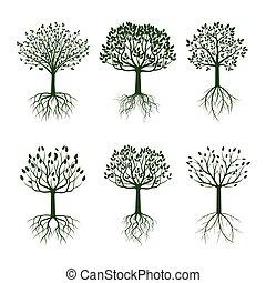 sæt, illustration., træer, vektor, grønne, roots.