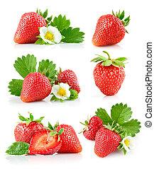 sæt, jordbær, berry, hos, grønnes blad, og, blomst