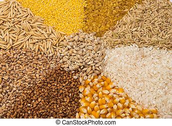 sæt, samling, kornsort korn
