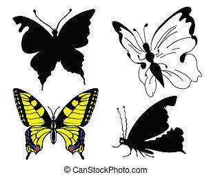 sæt, sommerfugl, på hvide, baggrund
