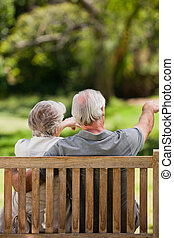 séance, couple, dos, banc, leur, appareil photo