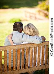 séance, couple, dos, personnes agées, banc, leur, appareil photo