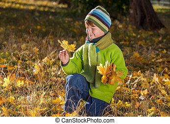 séance garçon, bouquet, feuilles, parc, automne