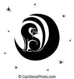 séance, lune, élégant, chat, espiègle