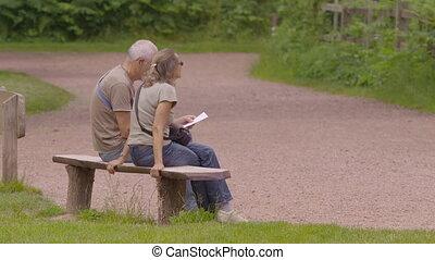 séance, parc, couple, banc