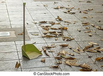 séché, feuilles, ratisser, plancher, ramasse-poussière, leaf., housework., automne, automne