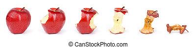 séché, labourer, frais, pomme, séquence