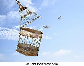 s'échapper, cage