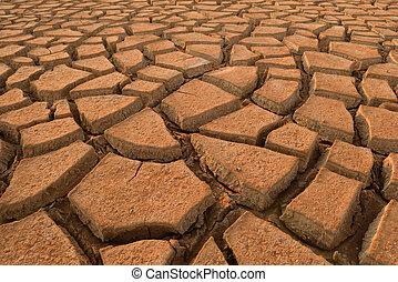 sécheresse, terre