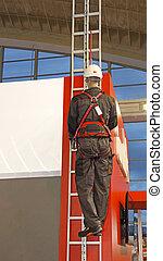 sécurité, échelle, harnais
