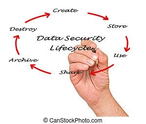 sécurité, données, lifecycle