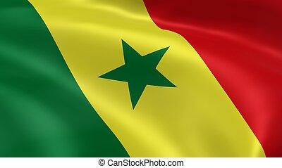 sénégalais, drapeau, vent