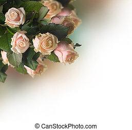 sépia, roses, border., vendange, appelé