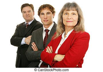 sérieux, équipe, business