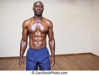 sério, shirtless, jovem, muscular, homem