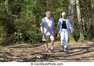 sétáló, párosít, liget, idősebb ember, át