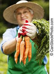 Sênior, cenouras, mulher