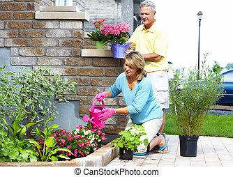 sênior, jardinagem, par.