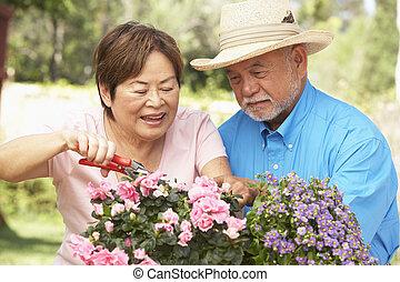sênior, jardinagem, par, junto