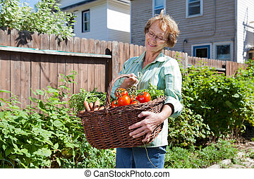 sênior, legumes, mulher, jardim