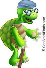 sênior, tartaruga, caricatura