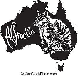 símbolo, australiano, numbat
