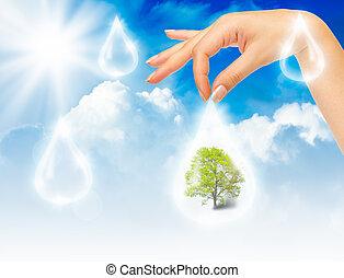 símbolo, de, proteção ambiente
