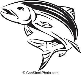 símbolo, salmón