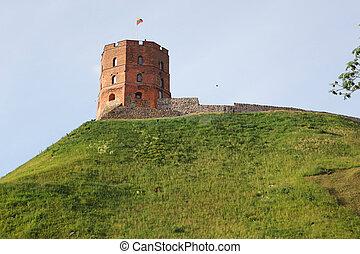 símbolo, vilnius, lituania, torre, gediminas