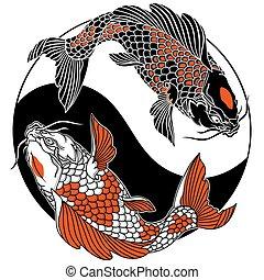 símbolo, yang, peces, círculo, yin, dos, carpa de koi