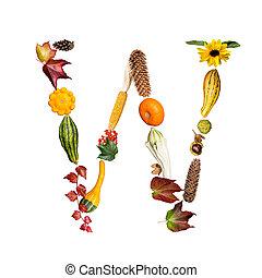símbolos, alfabeto, outono, w, letra