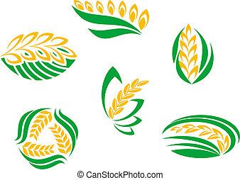 símbolos, de, cereal, plantas