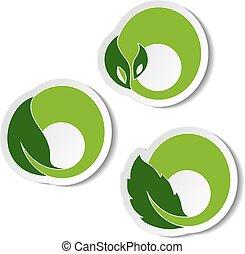 símbolos, elementos, natural, naturaleza, hoja, pegatina, vector, plano de fondo, blanco, plant., circular