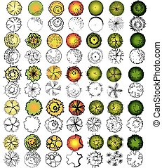 símbolos, jogo, copa árvore