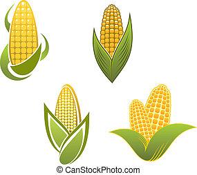 símbolos, milho, amarela, ícones