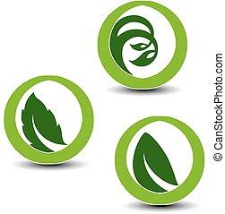 símbolos, planta, elementos, natural, naturaleza, vector, hoja, circular