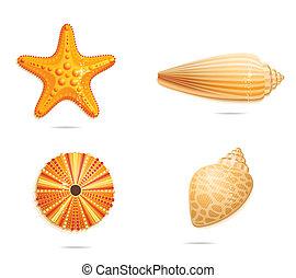 símbolos, resumen, conjunto, mar amarillo