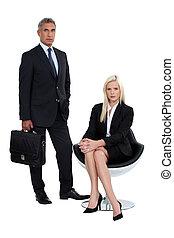 sócios, macho, femininas, negócio