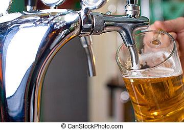 sör, vázlat